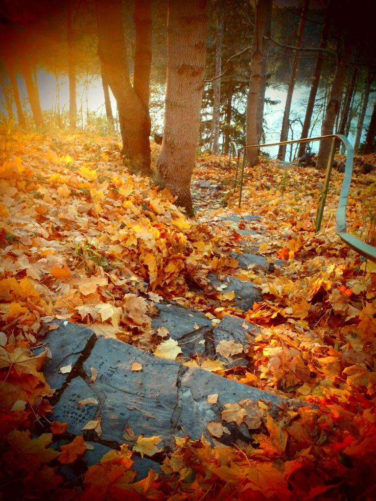 a secret path in Espoo, Finland