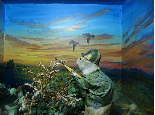 Museum of stuffed gophers set up in various scenes.
