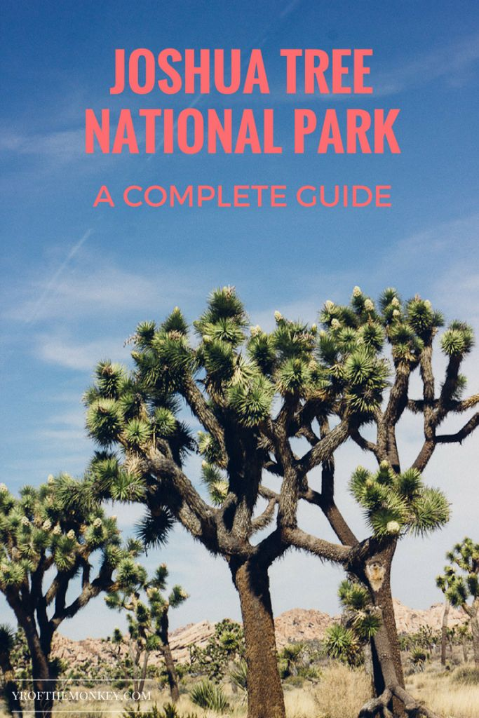 The only guide you will need to explore Joshua Tree National Park, California, USA. Filled with great tips and suggestions on how to navigate the park and catch a sunrise.