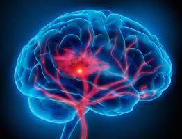 Seguimos con la serie de posts sobre neuroeducación y hoy hablamos de la motivación por el aprendizaje. Analicemos en un primer estadio. ¿Por qué en mucho