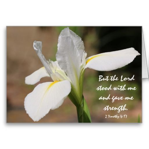 Sympathy Quotes Bible: 16 Best Images About Sympathy Cards On Pinterest