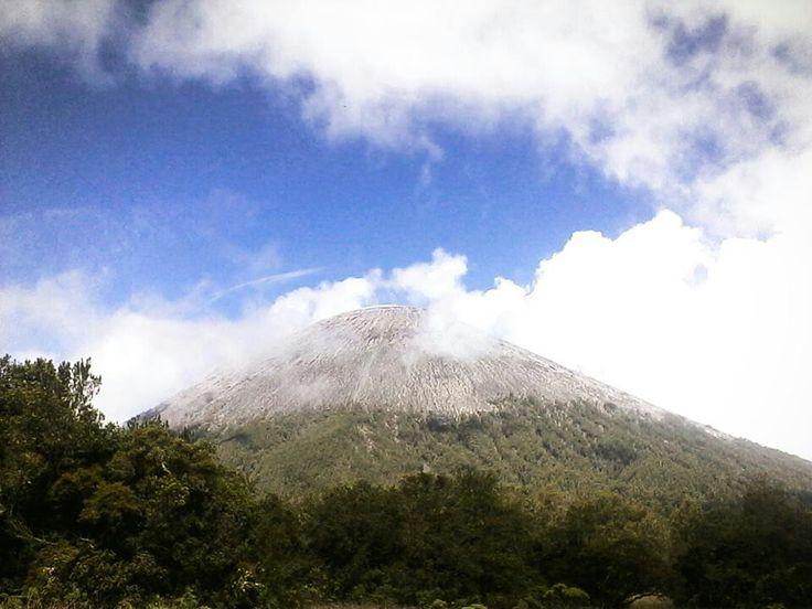 at Mt. Semeru (3676 Mdpl)
