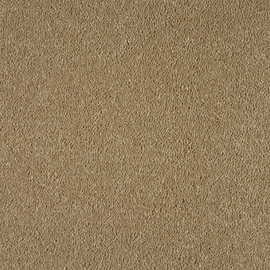 Live the WHIMSICAL trend with Feltex Classic 'Corinthian' carpet in colour 8/- Wheat #neutrals