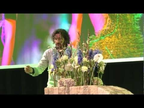 Making everyday life extraordinary: Pim van den Akker at TEDxDelft