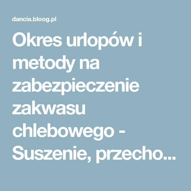 Okres urlopów i metody na zabezpieczenie zakwasu chlebowego - Suszenie, przechowywanie zakwasu - LEŚNY ZAKĄTEK - bloog.pl