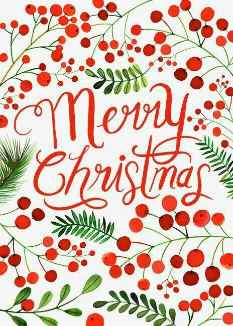 Merry Christmas #hollyandberry