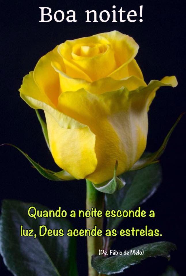 Boa noite!  Acesse a linda Reflexão (Padre Fábio de Melo - outra imagem e com link para a letra da música de Vinícius de Morais: A Felicidade).