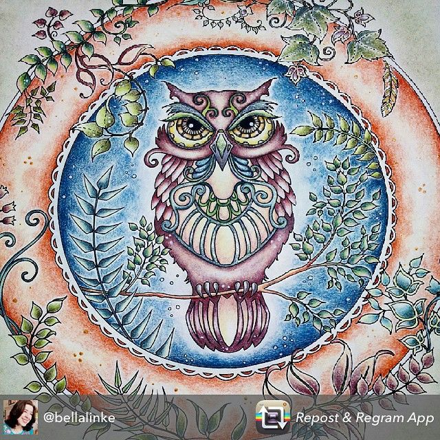 enchanted forest coloring pages owl - photo#7