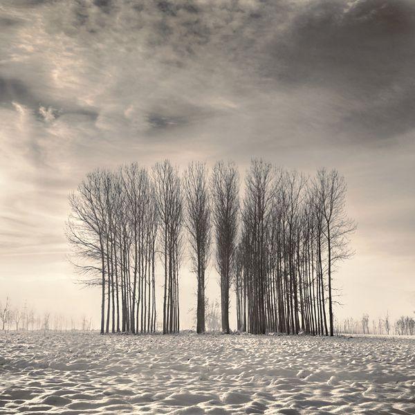 a winter tale.. by nilgunkara.deviantart.com on @deviantART