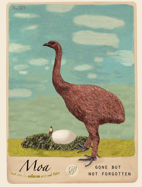 For a touch of Victoriana curiosity, the Moa print... a buxom beauty.
