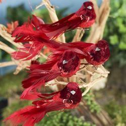 Artificial Birds and Nests - Floral Supplies - Craft Supplies
