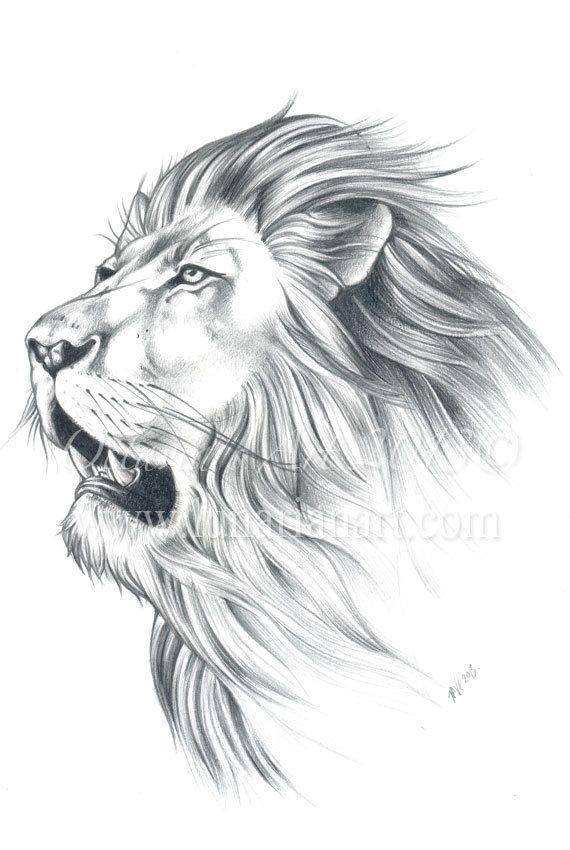 Lion Portrait  Original Sketch  Lion Original Art by Lunarianart, £130.00