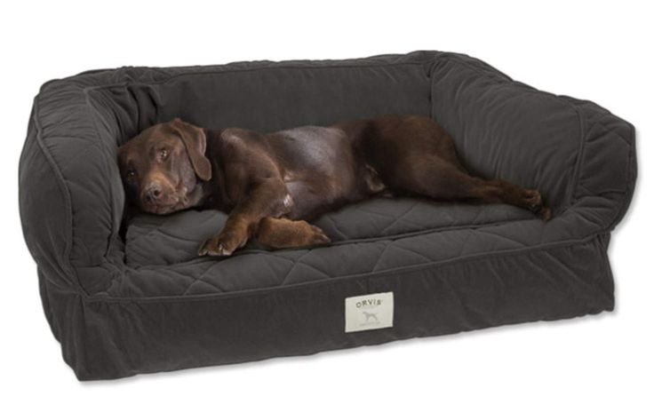 | All Dog Beds | Dog Beds | Dogs - Orvis Mobile