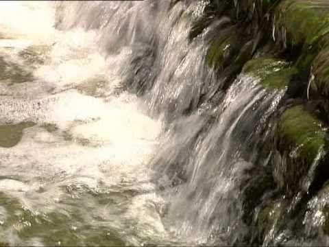 Om vatten, kretslopp och ekosystem » Gratis i Skolan - Ämnesövergripande SO/NO