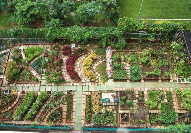 .#garden