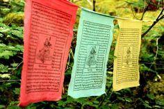 Aprende el significado de los mantras con este listado claro y preciso. http://reikinuevo.com/mantras-significados/