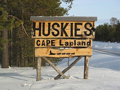 We can assure you that we are not a cafe! Here at #CAPELapland #HettaHuskies, we offer a lot more than tea and biscuits! ;)