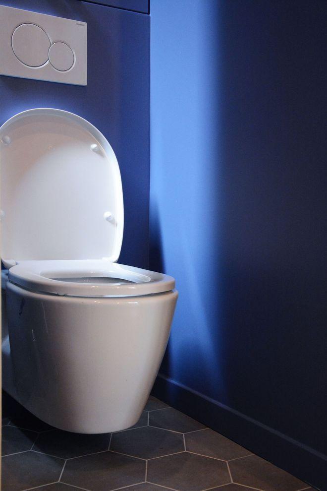 Après Travaux : Des WC Entre Bleu Et Gris ! WC Suspendu Geberit.