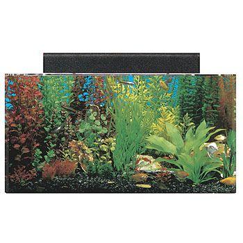 Seaclear rectangular 20 gallon aquarium combos in clear for 20 gallon fish tank petsmart