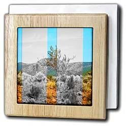 3dRose - Jos Fauxtographee Real Art - The mountains part in black and white, part color - Tile Napkin Holders