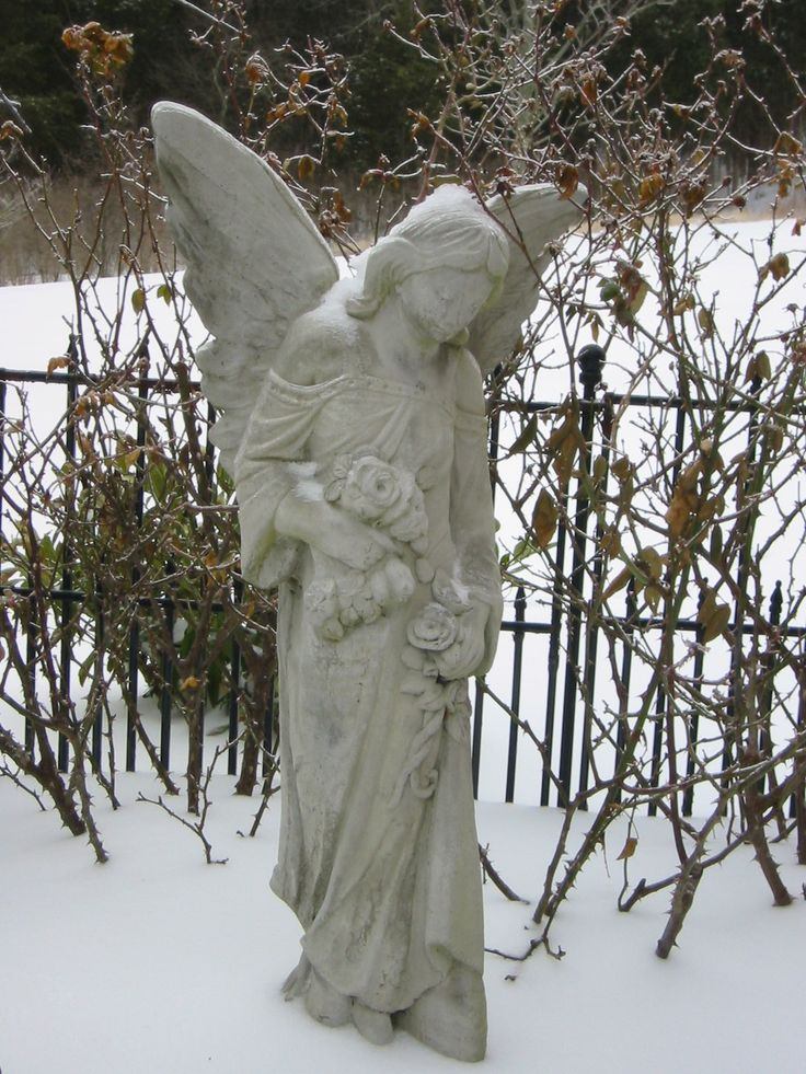 An Angel Garden Statue Or Garden Cherub Angel, Deserves A Special Spot In  Your Garden. These Statues Are Both Attractive And Inspirational.