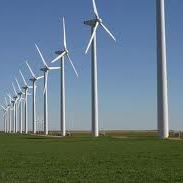Wind farm: sustainable energy source or lethal weapon?