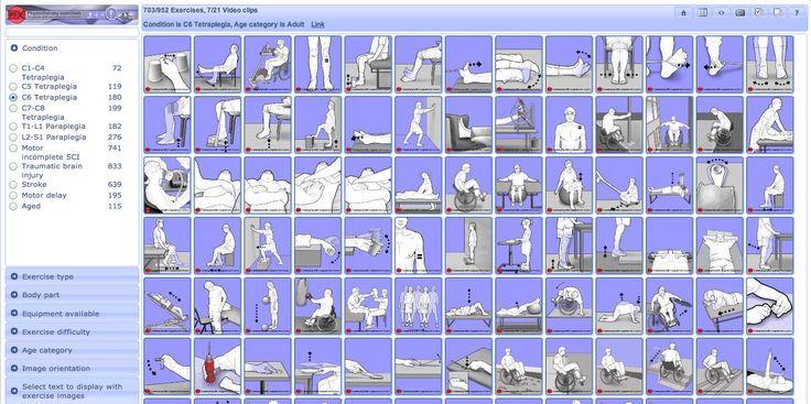 Exercises For Back Pain on Pinterest | Exercise for back pain ...