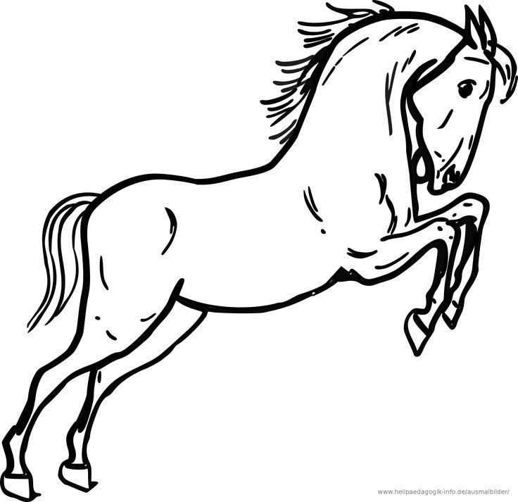 ausmalbilder tiere pferde 03   ausmalbilder   pinterest