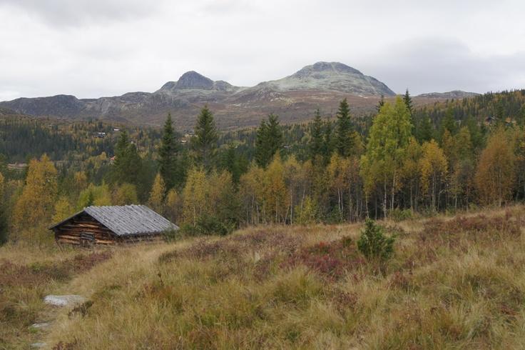 """""""Mitt lille land"""" -norsk natur på sitt vakreste. Utsikt mot gaustadknærne en flott høstdag."""