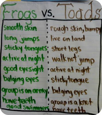 Frog and Toad facts anchor paper