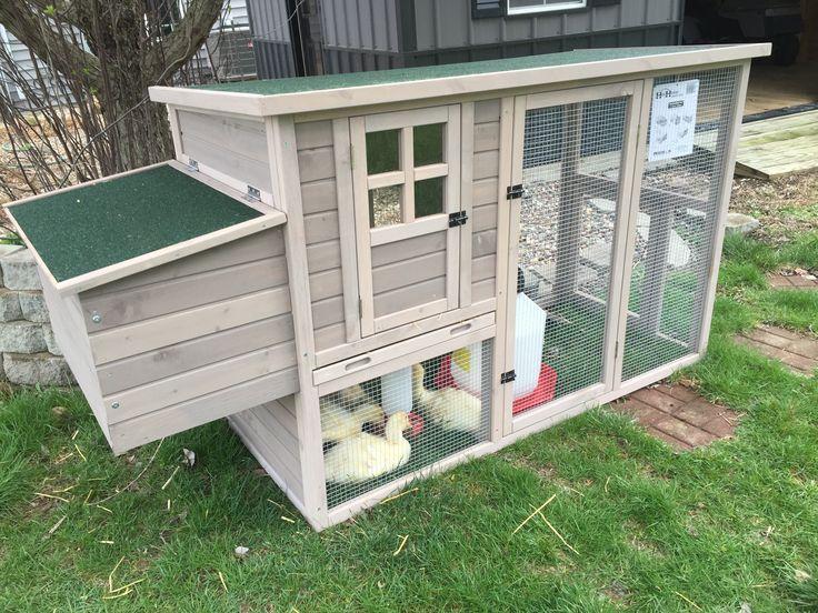 The Duck House on Columbus Road -  thehouseoncolumbusroad.blogspot.com