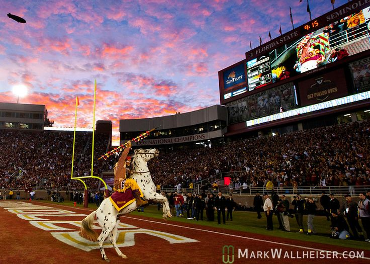 Nothing like FSU Football on a Saturday night under the lights!