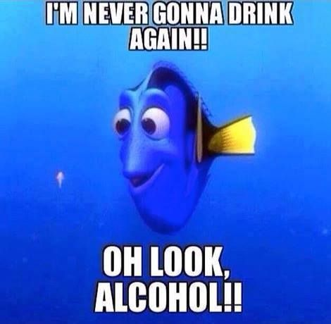 I'm never gonna drink again!! oh look, alcohol!! ~ Joke All You Can
