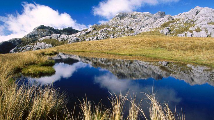 Video Neuseeland Pinterest: 26 Besten Neuseeland Bilder Auf Pinterest