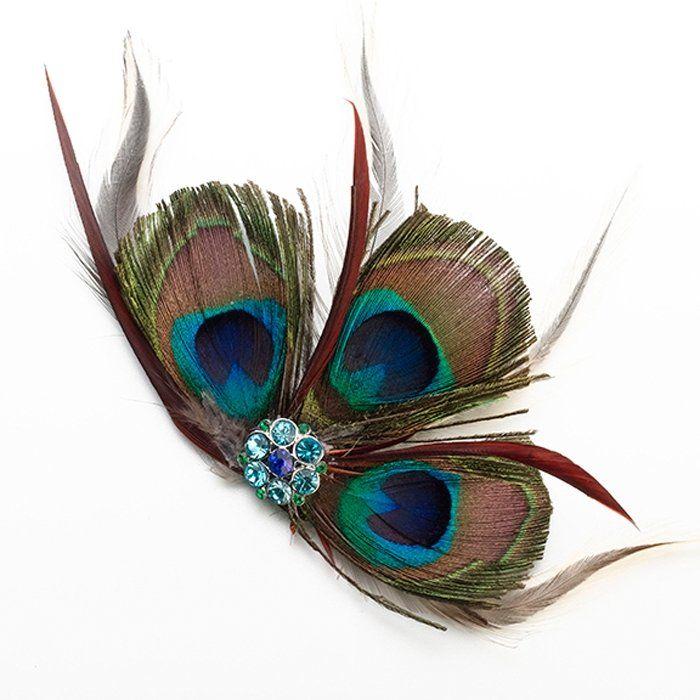 Speld Peacock