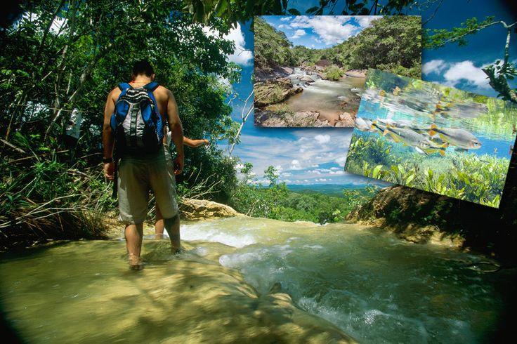 Bonito in Brasilien – der schönste Fleck der Erde? - TRAVELBOOK.de