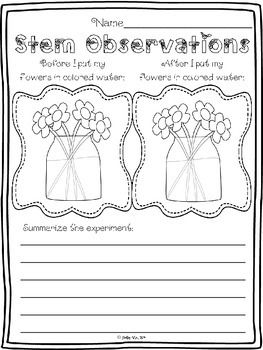 plant coloring pages science experiments - photo#5