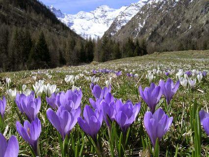 Valle d'Aosta, Italia.