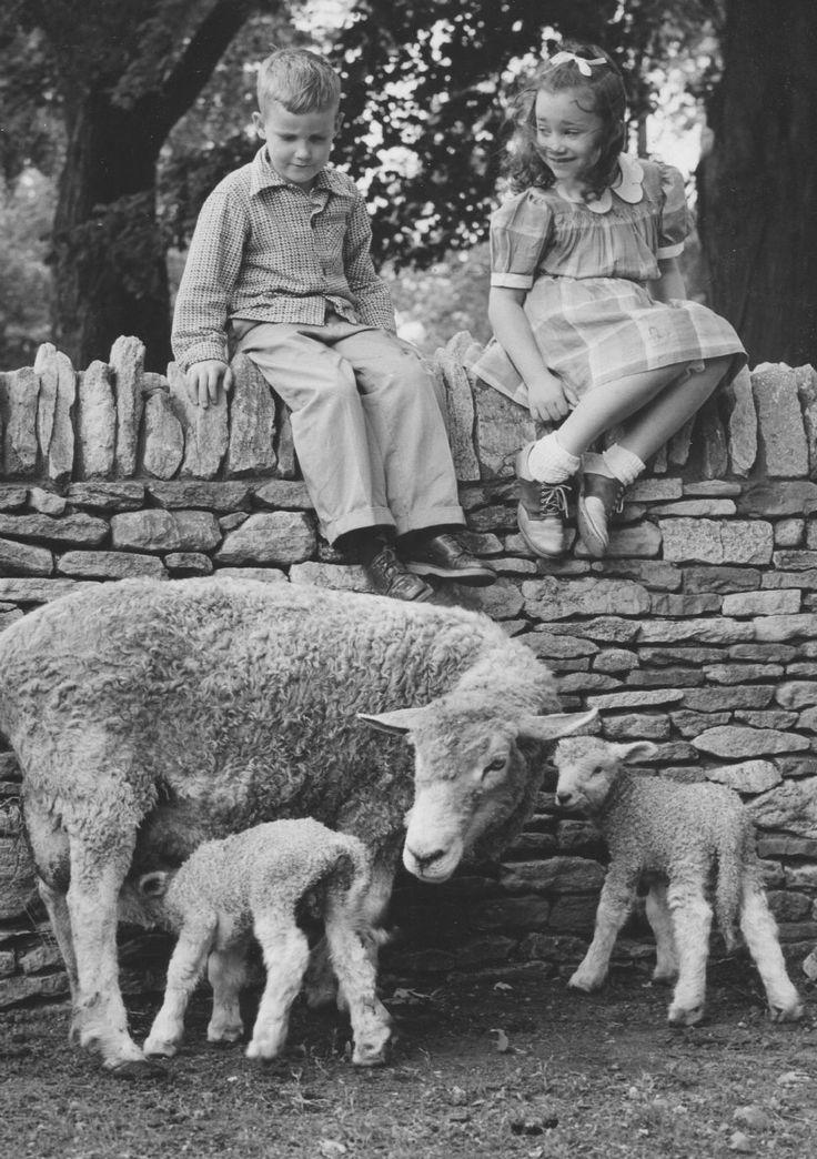 ford henry greenfield village children august 21 1955  detriot news
