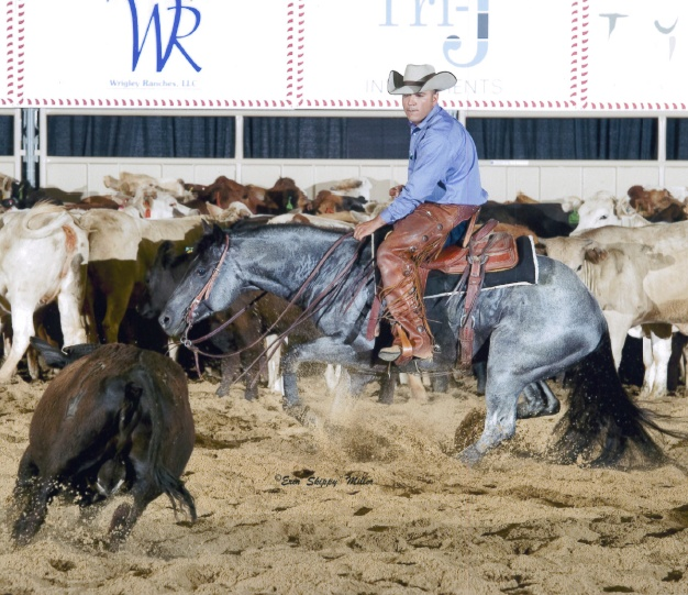 Holy cow. I want to do this so badly, anyone know a horse I can ride? Especially a blue roan! :)