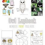 Free to download from Lapbook Lessons   Related Pinterest Boards:  Homeschool,  lapbook  zoo/animals  science