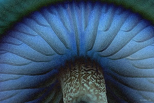 Grand Blue Mushroom. Photo art by WB Johnston, available as prints in a large variety of sizes.