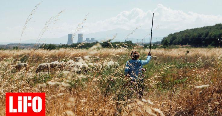 Στον κάμπο της Πτολεμαΐδας η εκμετάλλευση του λιγνίτη ηλεκτροδοτεί το 50% της χώρας. Με μια παράπλευρη τραγωδία: ολόκληρα χωριά σβήστηκαν απ΄το χάρτη και κοινωνίες μετεγκαταστάθηκαν ξεθάβοντας και παίρνοντας μαζί μέχρι και τους νεκρούς τους.