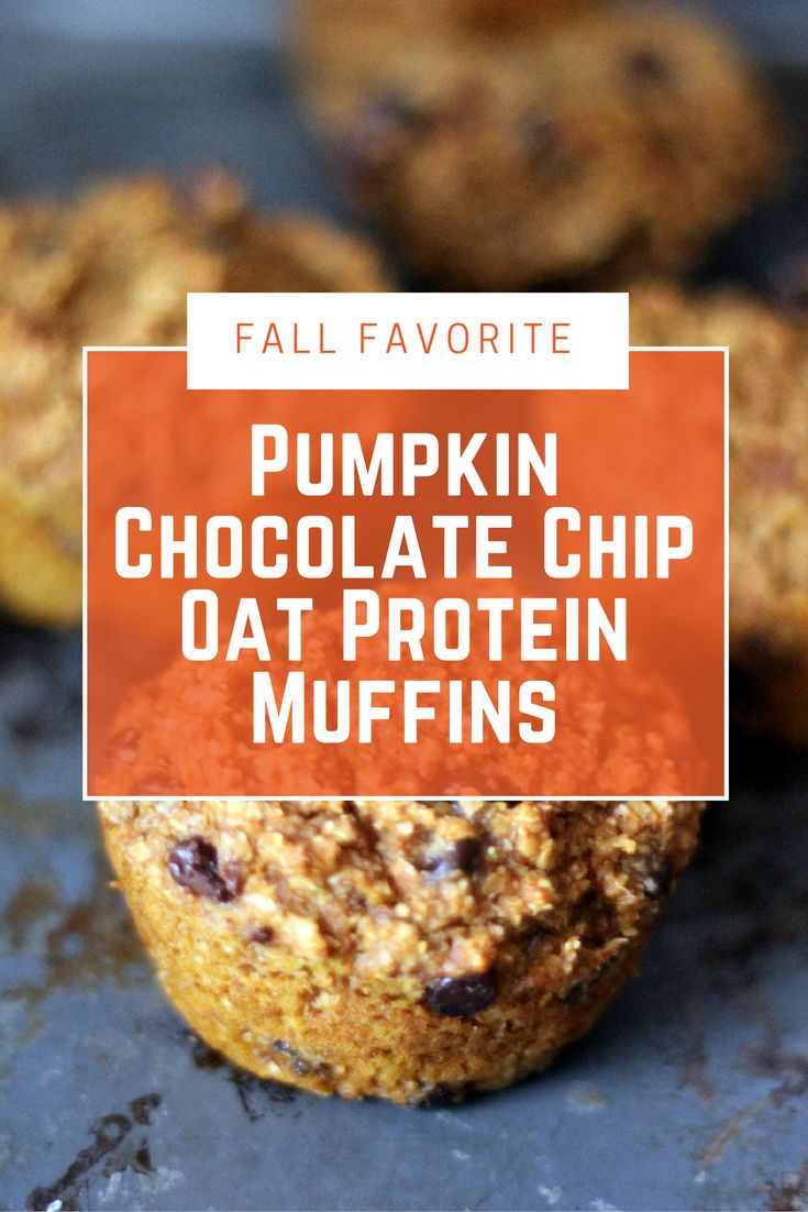 Whip up a batch of these pumpkin chocolate chip oat protein muffins this fall! These are the perfect protein-packed way to start your day! #proteinbreakfast #highprotein #pumpkinrecipes #fallrecipes #pumpkinbreakfast #healthybreakfast