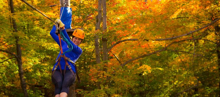 Experience the zip line and aerial park at Camp Fortune. And try the free fall airbag jump! http://campfortune.com/summer/tickets-information/