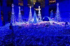 今年もカレッタ汐留のイルミネーションはうっとりする青の世界() とっても幻想的で毎年感動しています カレッタのイルミネーションは20分毎に行われるイルミネーションと音楽のショー ショーの時は七色に光輝いてとっても綺麗ですよ ライトアップは11/17木の夜からとの事 初日は17日の20時からですがそれ以降は夕方から毎日ライトアップしていますよ ぜひぜひ美しいイルミネーションの世界をお楽しみください  カレッタイルミネーション2016 http://ift.tt/2eScYLD tags[東京都]