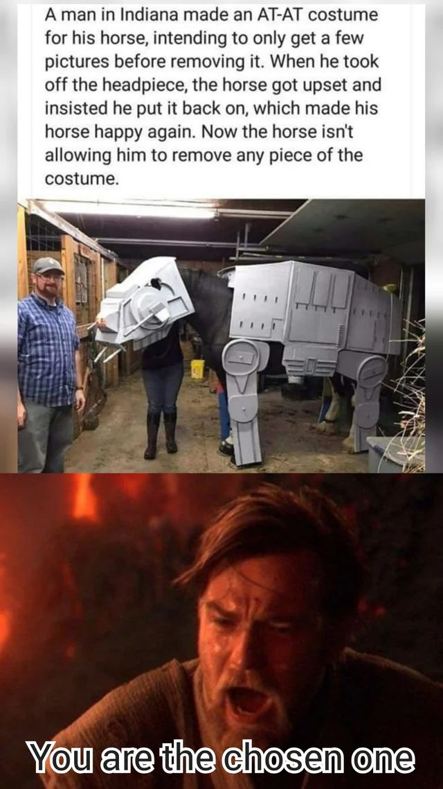 reddit the front page of the Star wars jokes
