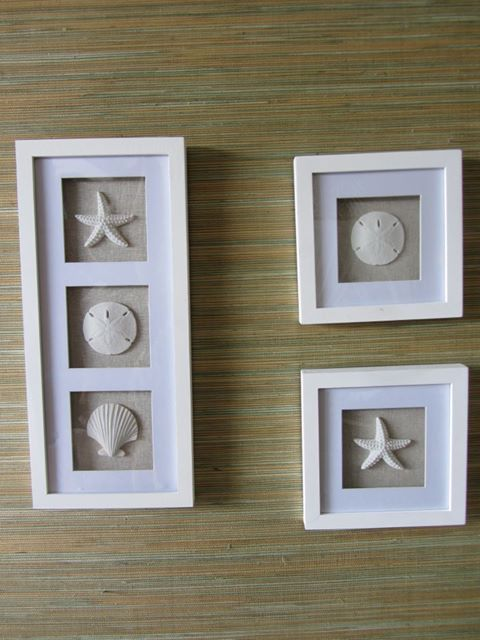Shadow Box For The Home Seashell Shadow Boxes