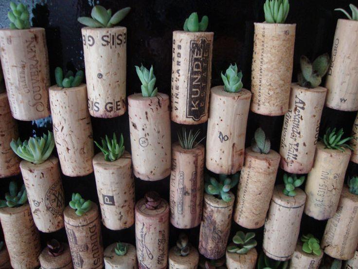 Wijn kurk Magnet sappig Cactus Air planten diverse Mix door ItsBees