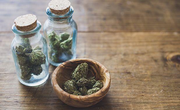 Kannabis haitat